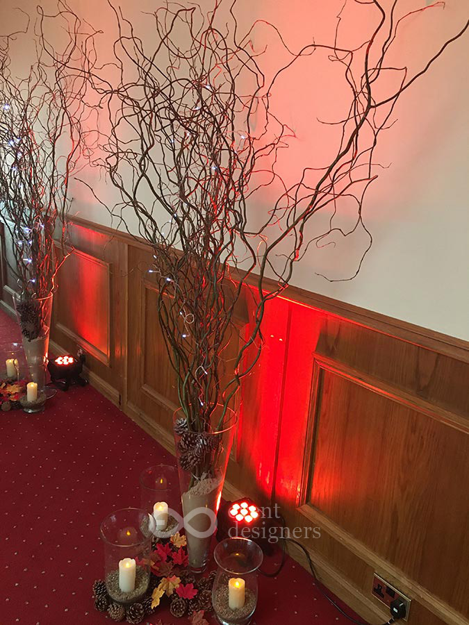Twisted willow displays